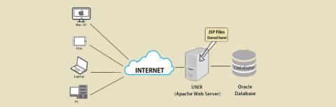 انواع سرور شبکه _ شبکه دیده بان